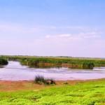 Excursii - Pensiunea Lebada, Cazare in Delta Dunarii, Cazare Tulcea, Pensiune Delta Dunarii (1)