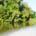 Excursii - Pensiunea Lebada, Cazare in Delta Dunarii, Cazare Tulcea, Pensiune Delta Dunarii (19)