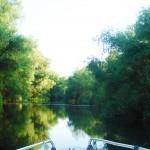 Excursii - Pensiunea Lebada, Cazare in Delta Dunarii, Cazare Tulcea, Pensiune Delta Dunarii (22)