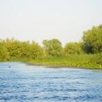 Excursii - Pensiunea Lebada, Cazare in Delta Dunarii, Cazare Tulcea, Pensiune Delta Dunarii (30)