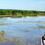 Excursii - Pensiunea Lebada, Cazare in Delta Dunarii, Cazare Tulcea, Pensiune Delta Dunarii (8)